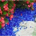 blueglass-150x150
